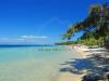 pachis-beach